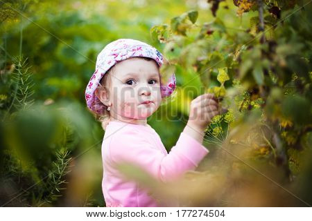 Little Girl Among The Thickets Of Grass