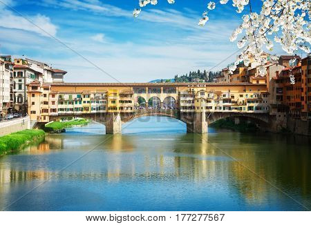famous bridge Ponte Vecchio over waters of river Arno, Florence at spring day, Italy