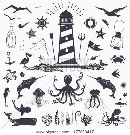 Big set of marine animals: cachalot, shark, octopus, jellyfish, starfish, seahorse, crab, seagulls isolated on white vector nautical illustration