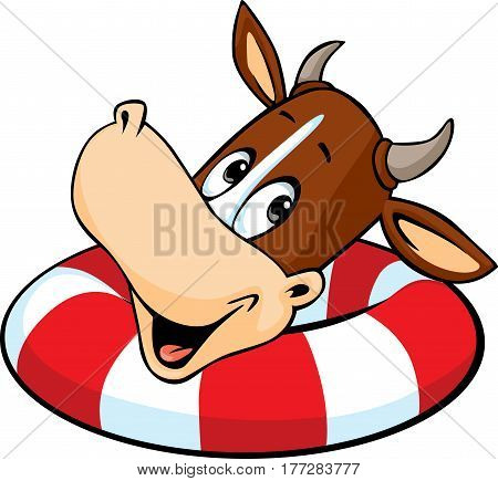 cute cow swim in inflatable ring - vector cartoon illustration