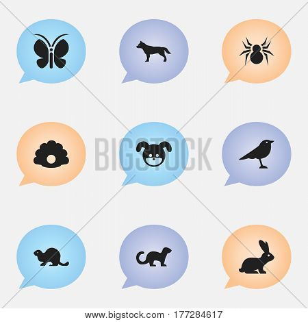 Set Of 9 Editable Nature Icons. Includes Symbols Such As Moth, Puppy, Rabbit And More. Can Be Used For Web, Mobile, UI And Infographic Design.