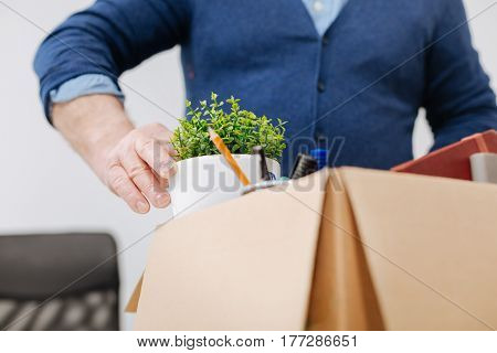 Last day in this company. Concentrated aged fired office worker standing in the office and gathering his belongings while holding the box