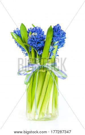 Bouqet Of Blue Hyacinth With Ribbons On The White Background