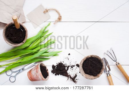 Garden Tools And Tulips On The White Wooden Table