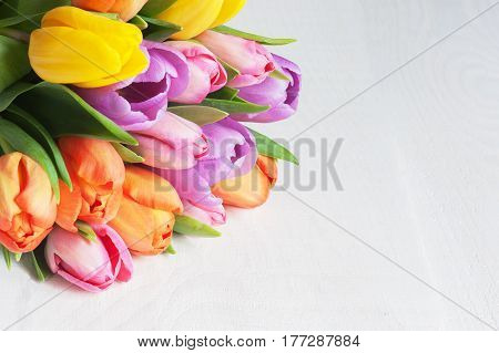 Bright Color Tulips On The White Wooden Table