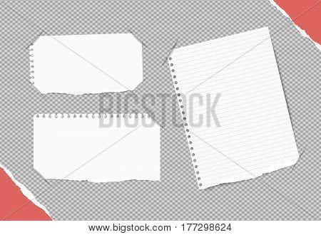 White blank, ruled notebook, copybook sheets inserted into gray squared background with red paper in corners