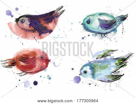 Children's drawing. A set of birds painted in watercolor.