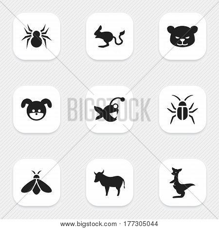 Set Of 9 Editable Nature Icons. Includes Symbols Such As Arachind, Jerboa, Fish And More. Can Be Used For Web, Mobile, UI And Infographic Design.