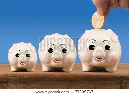 Three piggybanks in small, medium and large sizes sitting on a wooden shelf or table with gold coin being inserted into largest one