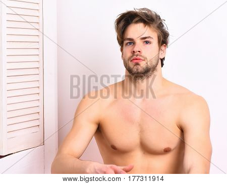 Bearded man short beard. Caucasian sexy macho man with moustache show muscle torso or chest on athletic body near window on white studio background