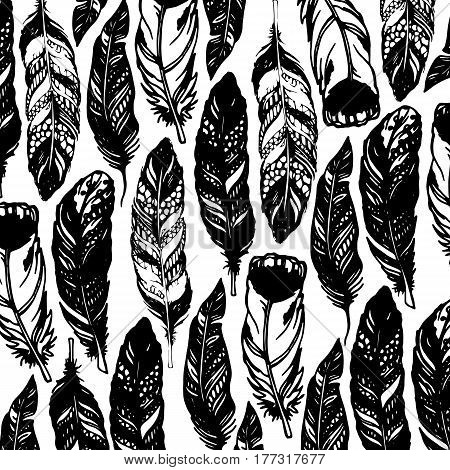 feather vector illustration art icon quill symbol