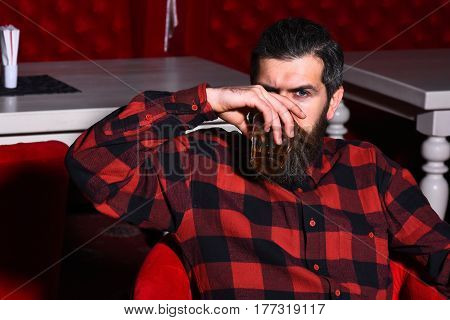 Bearded Man Hipster Holding Glass Of Whiskey In Red Chair