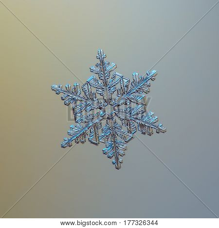 Macro photo of real snowflake: large snow crystal of stellar dendrite type with perfect symmetry and complex shape and inner structure. Snowflake sparkling on bright yellow - gray gradient background in cold light.