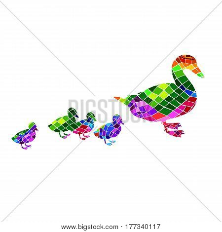 duck vector bird background animal beak cartoon cute nature illustration graphic drawing white