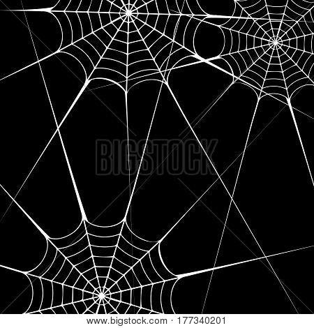 spider vector halloween illustration black design white element arachnid trap background
