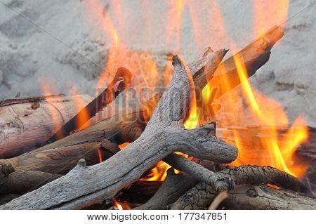 Camp fire on beach logs wood sticks flames orange blaze burn
