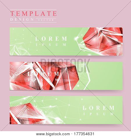 Gorgeous Banner Template Design