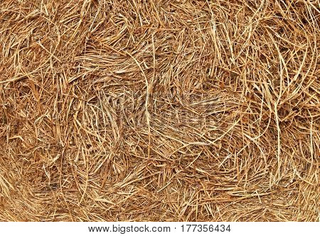 Hay stored bale full frame