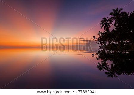 Beautiful sunset under the coconut plams on Sri Lanka beach.