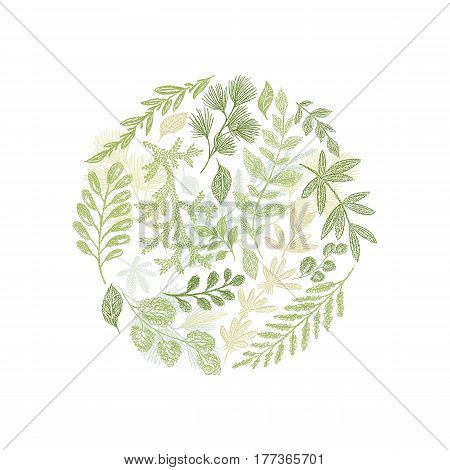 Circle green floral hand drawn composition vector isolated on white background. Greenery leaf arrangement