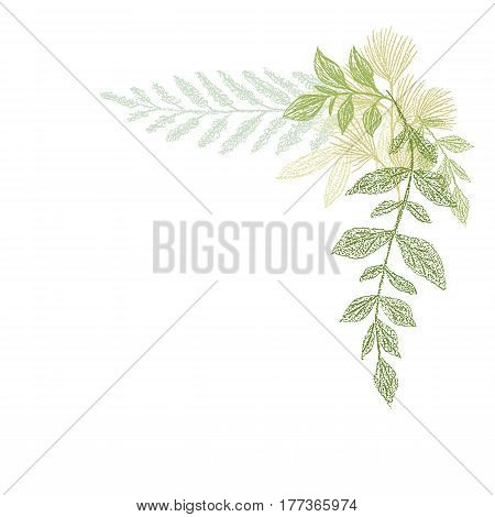 Floral hand drawing, green leaf corner composition. Vector greenery branches area isolated on white background. Plant border decoration elements for cards design
