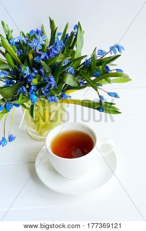 Bunch Of Tender Squill (scilla, Galanthus) Blue Flowers In A Glass With Water On White Background An