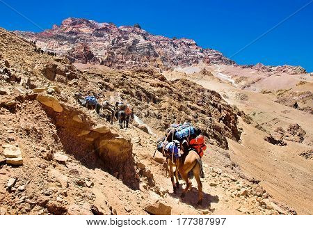 Beautiful View Of A Group Of Hikers Trekking In The Andes, Argentina, South America
