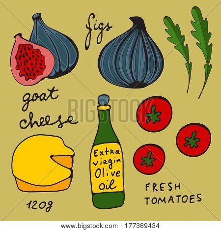 Colorful set of figs and goat cheese salad. Hand drawn illustration in vector format