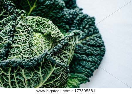 Fresh Green Kale Most Useful Vegetables On White Background