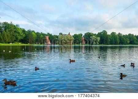 Large pond in the Catherine Park in Tsarskoe Selo in St. Petersburg