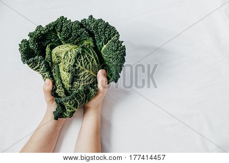 Fresh Green Kale Most Useful Vegetables In Woman Hands On White Background. Heart Shape