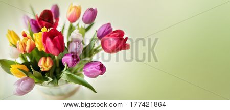 Colorful spring bouquet with tulips on tender green background for mothers day