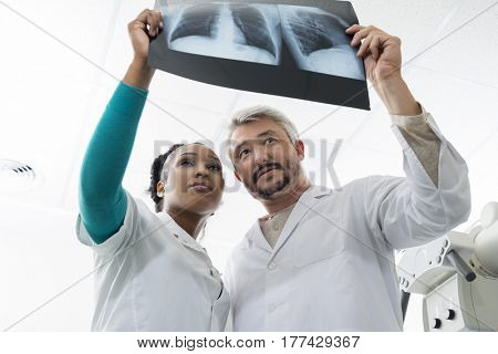 Male And Female Doctors Examining Chest X-ray In Hospital