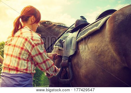Taking care of animals horsemanship equine concept. Redhead cowgirl getting horse ready for ride on countryside.