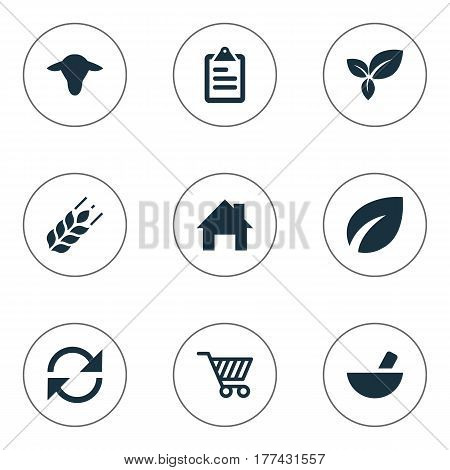 Vector Illustration Set Of Simple Agricultural Icons. Elements Buffalo, Leaves, Medicament And Other Synonyms Wheat, Cattle And List.