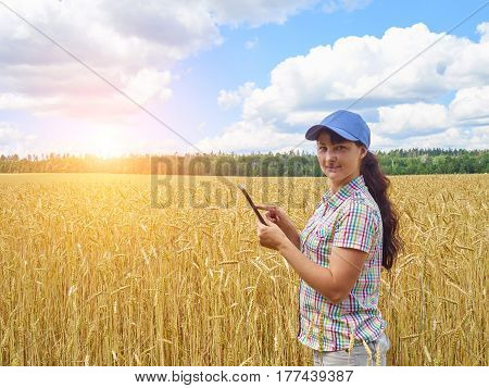 Young pretty farmer girl standing in yellow wheat field with a tablet in hands.