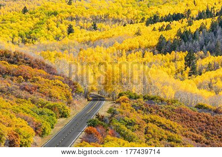 Fall foliage along Colorado Route 92 near Black Canyon of the Gunnison National Park