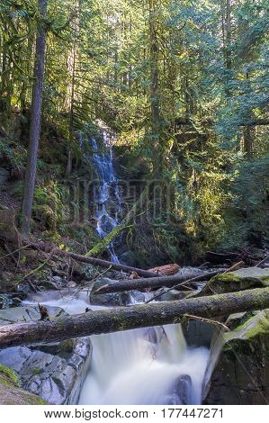 Beautiful Mountain creek in the forest Cypress Falls Park West Vancouver British Columbia Canada