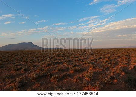 Landscape of Camdeboo National Park during the sunset in South Africa