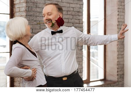 Trying to seduce you. Charismatic passionate inspired aged man tangoing with senior woman in the dance studio while demonstrating dance skills and holding rose with his teeth