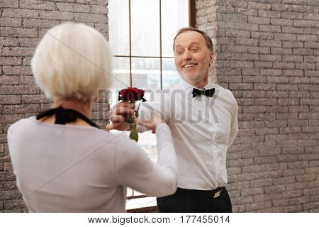Giving you my heart. Optimistic charming happy aging man tangoing with senior woman in the dance studio while expressing feelings and holding rose