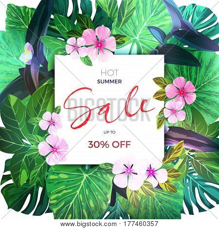 Customizable floral design template for summer sale. Tropical flyer with pink exotic flowers and green palm leaves, vector illustration.
