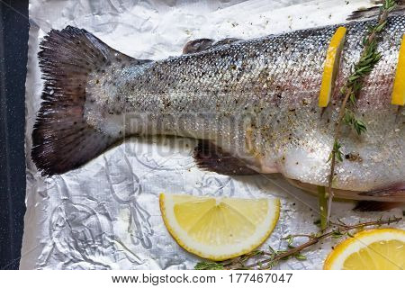 River Fish Trout On A Baking Sheet Stuffed With Lemon Wedges And A Sprig Of Green Thyme. Shallow Dep