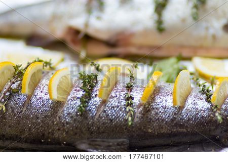 Two River Fish Trout On Baking Tray Stuffed With Lemon Wedges And A Sprig Of Green Thyme. Shallow De