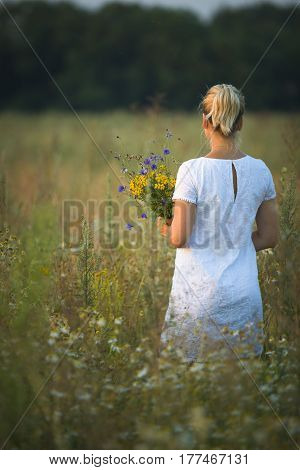 Back view on young blond woman walking in the field and picking wild flowers on a sunny summer day. Girl and nature. Lifestyle concept