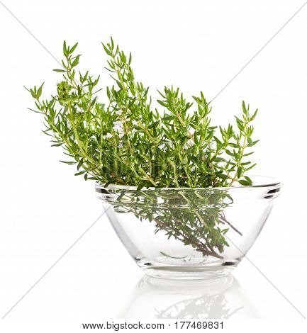 thyme in the glass bowl on a white background