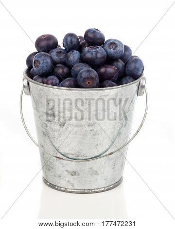 ripe blueberries in metallic bucket on white background