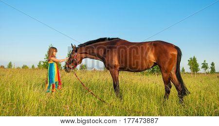 cute little girl in bright dress stroking horse in field amongst grass
