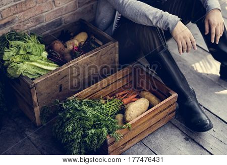Gardener with organic fresh agricultural product