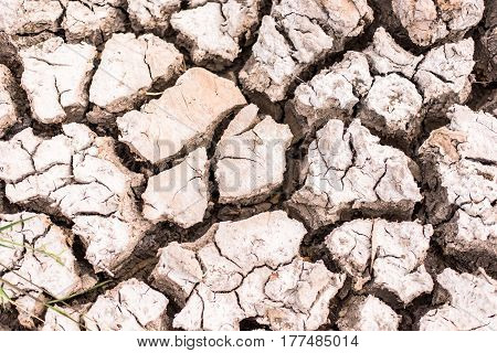 Dry cracked earth background -clay,Closeup of dry soil, Cracked Ground Background